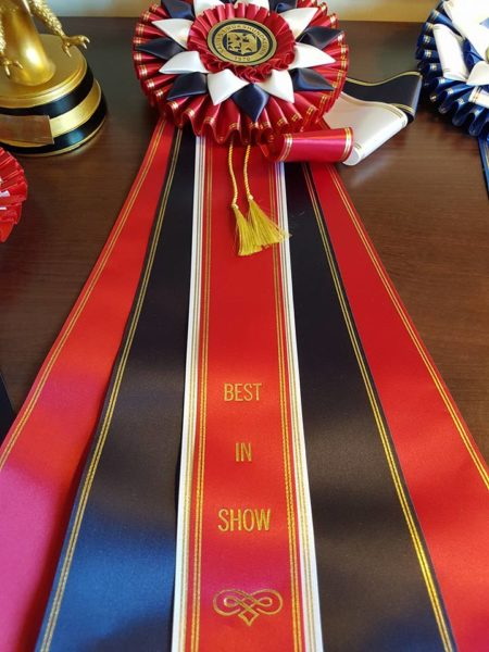 Best In Show!